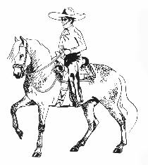 The Cowboy's Horse, by Richard W  Slatta, proprietor of the Lazy S